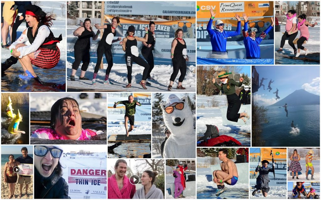2016 Polar Dip Collage